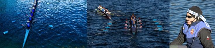 Harbour race