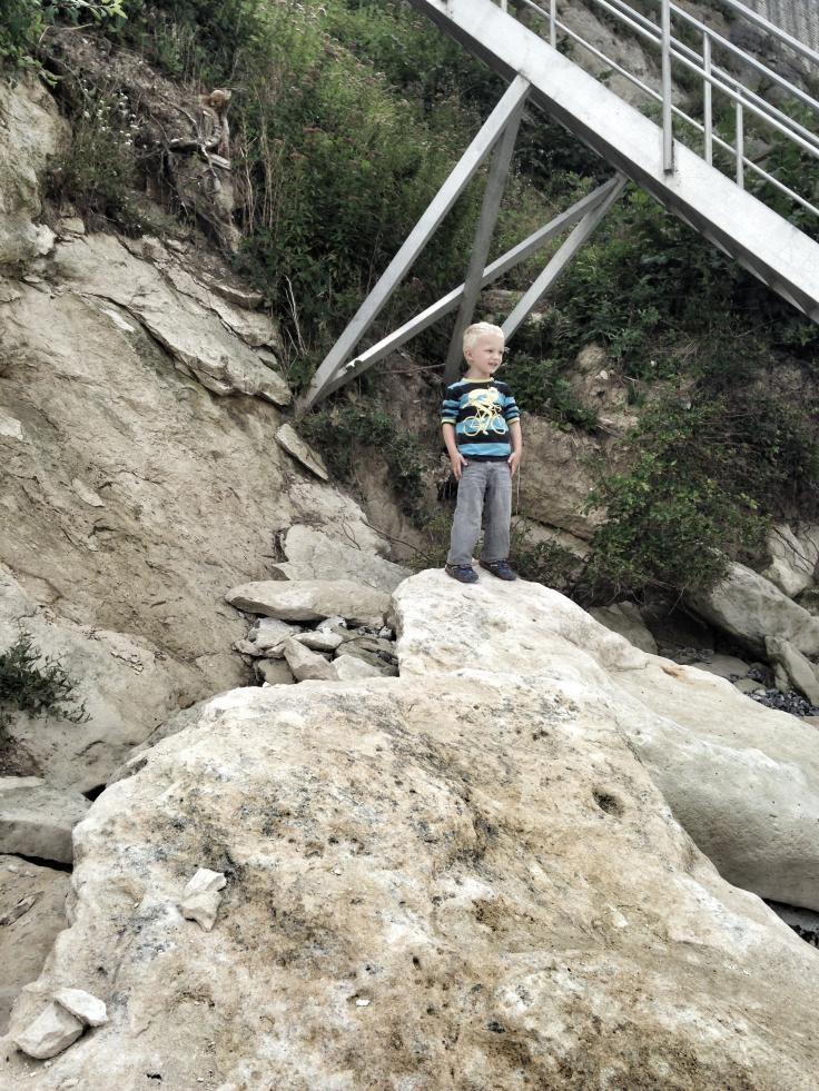 stevns-klint2