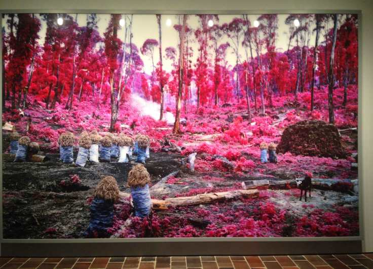 Richard-Mosse2